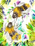 Bumble Bees by ClaraBacou
