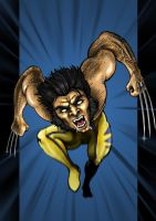 Wolverine by CanteRvaniA