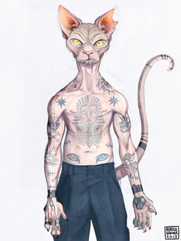 don sphynx by bechahns