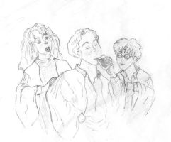 HP Golden Trio by caitiedidd