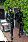 Double Ponygirl by ropemarks