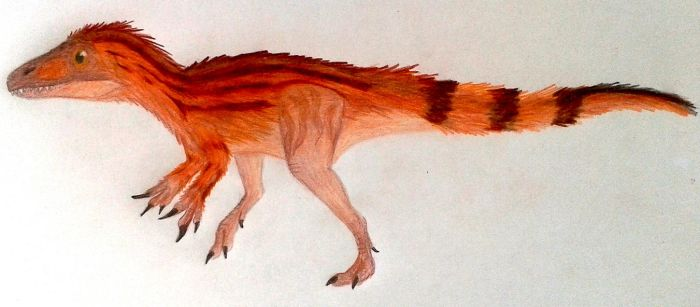 A baby Spinosaurus aegyptiacus (uh... maybe) by ZeWqt