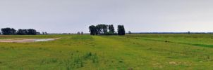 Land and Sky - Dutch Polder by Plurkis