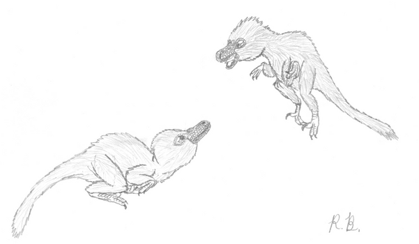 Raptor chicks by Jetavian