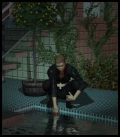 The reflecting pool by Luddox