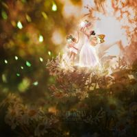 The Sunlight Faeries by GingerKellyStudio