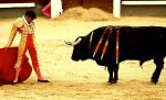 Bullfight in Las Ventas by BaciuC