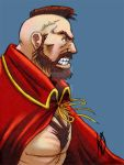 Zangief color by K-A-A-D