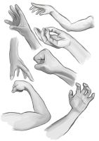 Hand/Arm Studies by Steph1254