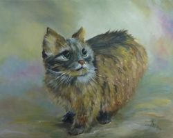 The cat by Buble
