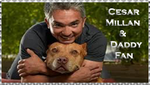 Cesar Millan and Daddy fan by Nei-Ning