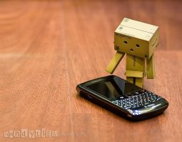 Danbo and Blackberry by 800ZZ