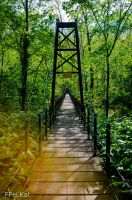 Patapsco bridge by FFeLKat