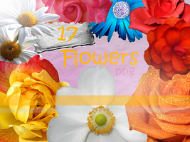 Flower PNG Pack by ItsTesss