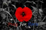 Pray For Paris by Deb-e-ann