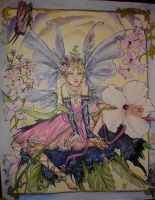Kirsty's Fairy by Carolyne