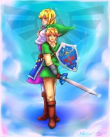 Skyward Sword by NorngPinky