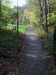 path by daisychains16