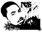 NAS Article by DiabeticMinority