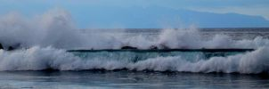 Wave by PipFish