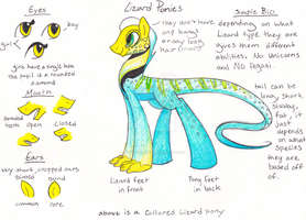 Lizard Ponies Ref 1 (closed) by PitterPaint