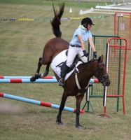 STOCK Showjumping 485 by aussiegal7