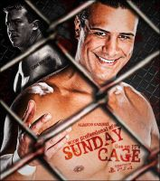 WxW Sunday Cage 2013 Wallpaper by Castivaz