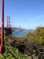 San Francisco Trip CDLXXVI by LDFranklin