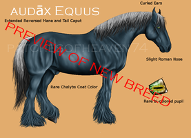 Audax Equus by patchesofheaven74