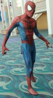 Spider-Man at Long Beach Comic Con 2013 by trivto