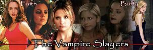 Vampire Slayers Banner by clarearies13