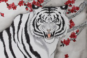 White Tiger of the West by verreaux