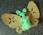 Key Lime Pie Batterfly- For Sale by superayaa