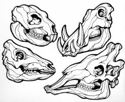 Animal Skulls Line Art by sammo371