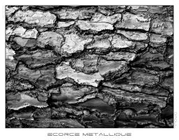 Ecorce Metallique by DiaouL