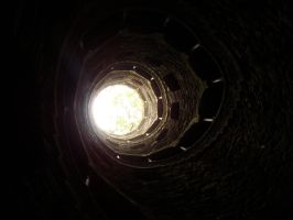 From the bottom up by Selenia-actimel