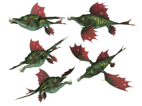 Dragon Fish PNG Stock by Roy3D