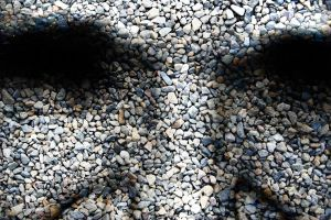 stone face by arghus