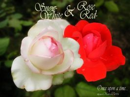 Once upon a time... Snow-White and Rose-Red by kumArts