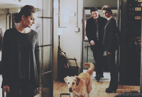 castle, beckett and dog by slaveformusic