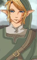 Link by Arkel-chan