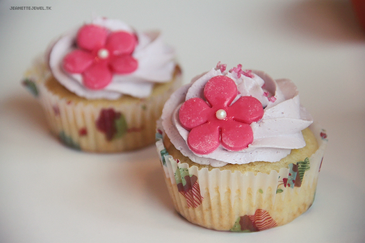 Cupcakes by JeanetteJewel