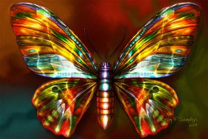 Butterfly 12 by inventivedreams