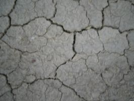 drought by Insan-Stock