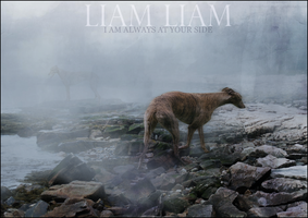 Liam Liam, by DragonBlessed