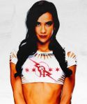 AJ Lee + CM Punk t-shirt by LaceMyChuckTaylors