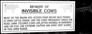 Invisible cows..... by nikkigurlie89