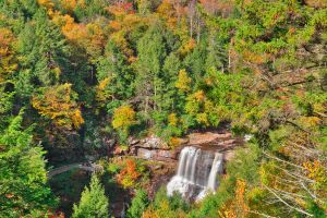 Autumn Blackwater Falls Overlook (freebie) by somadjinn