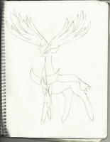 Xerneas Draw by darknes2012