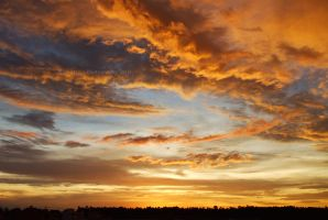 Gold Sky 2 by BlueArrowBR